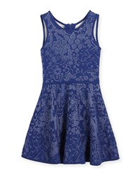 Milly Minis Floral Jacquard Fit And Flare Dress Navy White