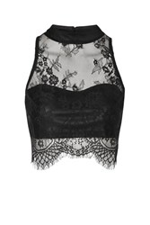 Glamorous Sweetheart Lace Crop Top By Black