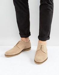 Zign Suede Desert Shoes In Stone Stone