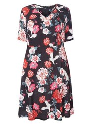 Dorothy Perkins Dp Curve Multi Coloured Floral Print Skater Dress