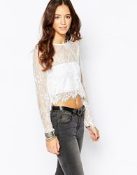 Goldie Glory Lace Crop Top Black