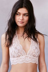 Out From Under Sheer Lace Halter Bra Rose