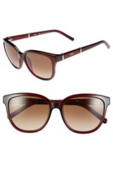 Chloe Women's Chloe 'Daisy' 54Mm Sunglasses Red