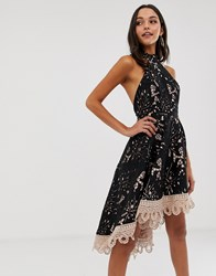 Forever Unique Lace Halterneck Midi Dress Black