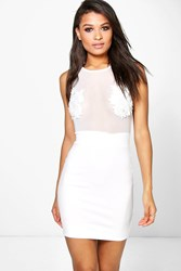Boohoo Lace Panel Mesh Bodycon Dress Ivory