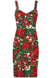 Dolce And Gabbana Floral Print Stretch Cady Dress Red