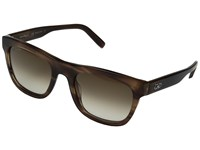 Salvatore Ferragamo Sf825sm Striped Brown Brown Gradient