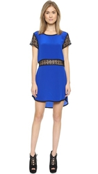 Liv Shift Dress With Lace Cobalt