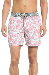 Maaji Joy Quest Swim Trunks Multicolor