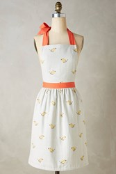 Anthropologie Stitched Songbird Apron Ivory