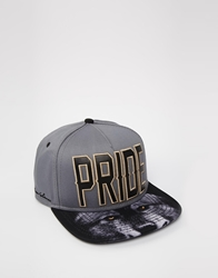 Cayler And Sons Cayler And Sons Pride Snapback Cap Grey