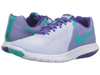 Nike Flex Experience Rn 5 Palest Purple Clear Jade Fierce Purple White Women's Running Shoes