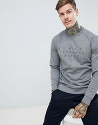 Armani Exchange Loose Fit Flocked Logo Raglan Sleeve Crew Neck Sweat In Light Grey