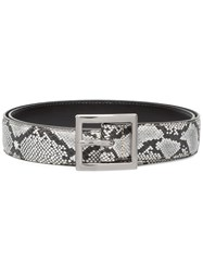 Amiri Python Print Buckled Belt Black