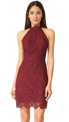 Bb Dakota Cara High Neck Lace Dress Aubergine