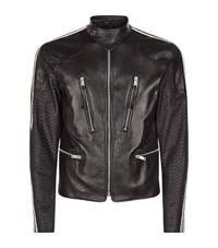 Alexander Mcqueen Python Sleeve Leather Biker Jacket Male Black