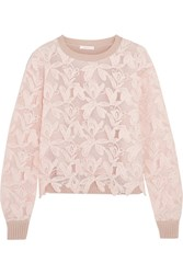 See By Chloe Guipure Lace And Knitted Cotton Sweater Pastel Pink