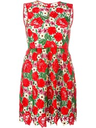 P.A.R.O.S.H. Floral Lace Flared Dress
