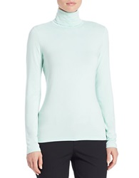 Lord And Taylor Fitted Turtleneck Icy Morn