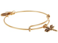 Alex And Ani Dragonfly Charm Bangle Rafaelian Gold Finish Bracelet