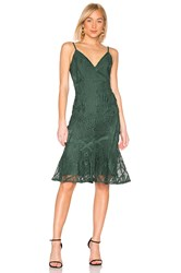 Aijek Love Is Embroidered Fit Flare Dress Green