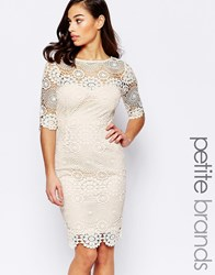Paper Dolls Petite Crochet Lace Pencil Dress Cream