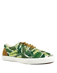 Bucketfeet Savusavu Canvas Sneakers Green
