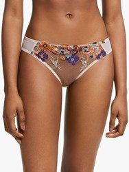 And Or Uma Ombre Floral Embroidered Briefs Multi