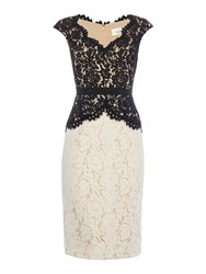 Eliza J Colour Block Lace Dress With Peplum Black And Ivory Black And Ivory