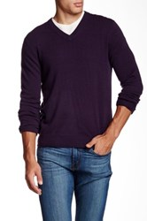 Qi Cashmere V Neck Sweater Purple