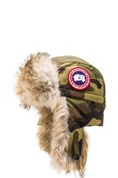Canada Goose Aviator Coyote Fur Trim Hat Army