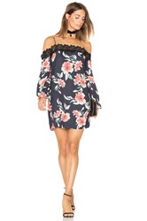 Eight Sixty Whispering Floral Dress Black