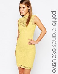 Paper Dolls Petite High Neck Lace Dress With Keyhole Back Yellow