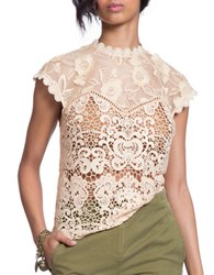 Plenty By Tracy Reese Lace Combo Top Tea Dyed