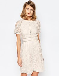 Lost Ink Lace Panel Skater Dress With Raglan Sleeve Nude Pink