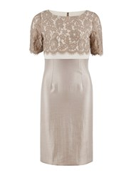 Gina Bacconi Scallop Flower Lace And Shimmer Dress Oyster