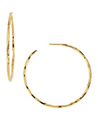 Thin Hammered Gold Plated Hoop Earrings Nest Jewelry