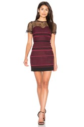 Greylin Heidi Lace Dress Wine