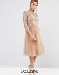 Chi Chi London Bardot Neck Midi Dress With Premium Lace And Tulle Skirt Deep Tan