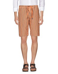Myths Bermudas Orange