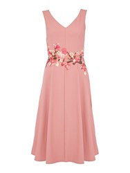 Twilight Rose Fit And Flare Fitted Midi Dress Pink
