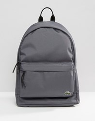 Lacoste Backpack In Grey Grey