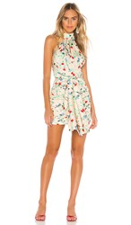 C Meo Collective Sectional Short Sleeve Dress In Cream. Apricot Floral