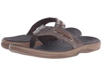 Sperry Baitfish Thong Brown Men's Sandals