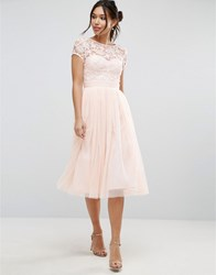 Little Mistress Short Sleeve Lace Bodice Midi Dress With Tulle Skirt Nude Pink