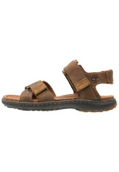 Timberland Hollbrook Walking Sandals Brown