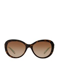 Tiffany And Co. Tiffany Oval Sunglasses Female Brown