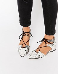 Asos Let's Play Pointed Lace Up Ballet Flats Snake Multi