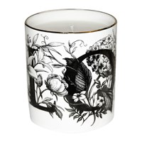 Rory Dobner Cutesy Candle Love