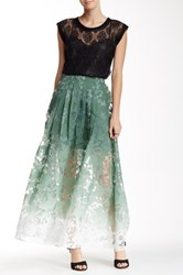 Stella And Jamie Astrid Ombre Maxi Skirt Green